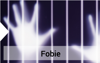 psicoterapia BG fobie